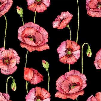 Акварельные цветы мака. изолированные. ручная роспись иллюстрации. красные цветы