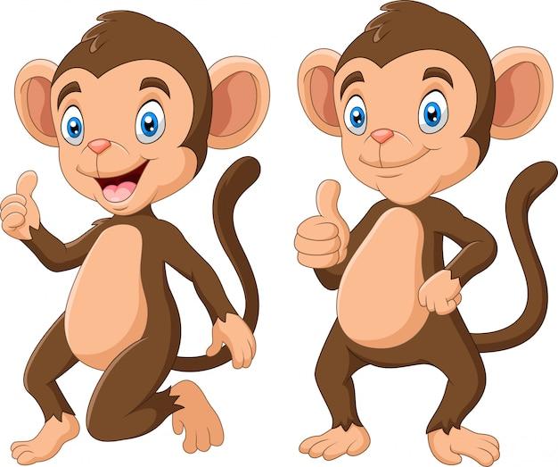 かわいい猿漫画イラストのセット
