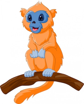 Милый мультфильм курносый обезьяна