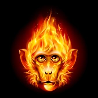 Рыжая огненная обезьяна