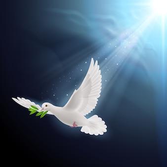 Летающий голубь с листьями в клюве
