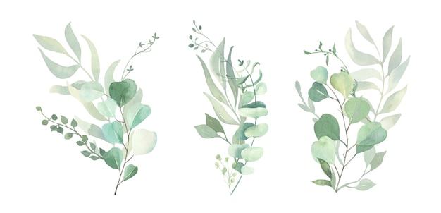 水彩の緑の葉のブランチ。