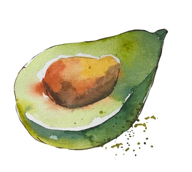 Акварель творческий зеленый авокадо с пятнами.