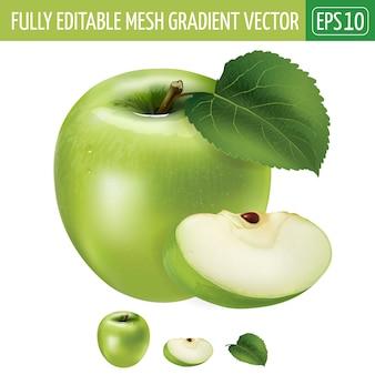 Иллюстрация зеленого яблока на белом