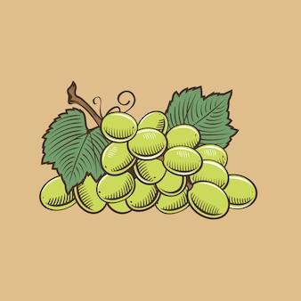 ビンテージスタイルのブドウ。色のベクトル図