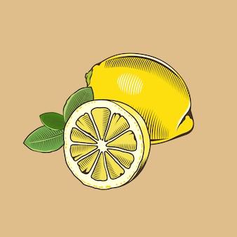 ビンテージスタイルのレモン。色のベクトル図