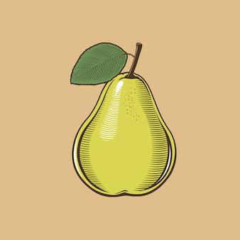 ビンテージスタイルの梨。色のベクトル図