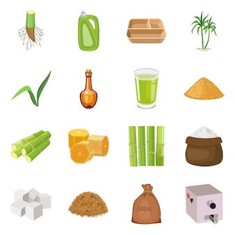 サトウキビと植物のロゴのベクトルイラスト。サトウキビのコレクションと農業セット