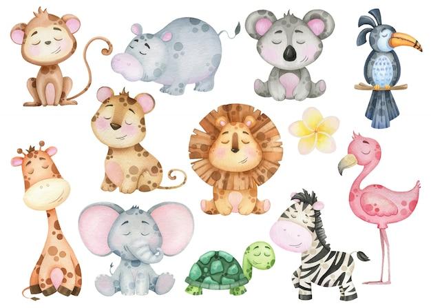 漫画の熱帯のエキゾチックな動物の赤ちゃんの大規模なセット。シマウマ、ライオン、サル、フラミンゴ。デザインの水彩画の要素