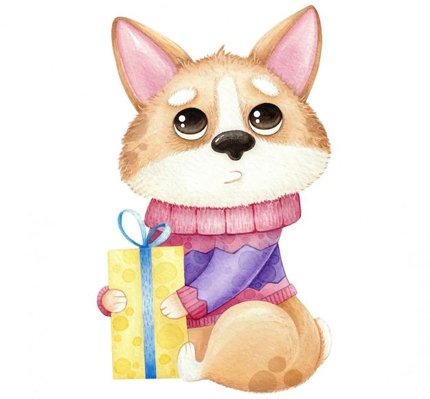Акварель милая собака корги с подарком, изолированные на белом