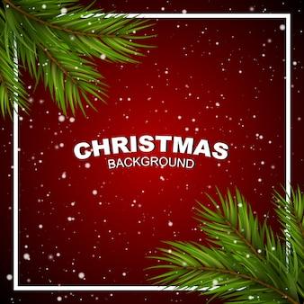 コーナーと雪の松の枝と赤のクリスマス。