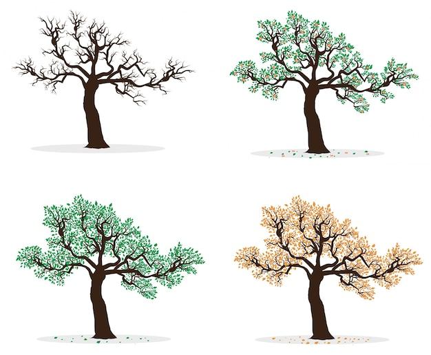 Коллекция четырех сезонных деревьев