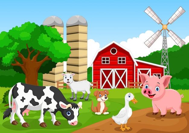 動物と農場の背景