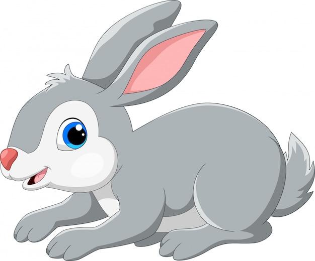 Милый кролик мультфильм