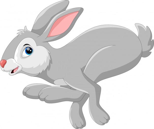 Милый кролик прыгать