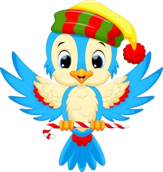 お菓子を運んでいる間サンタの帽子をかぶっているかわいい鳥