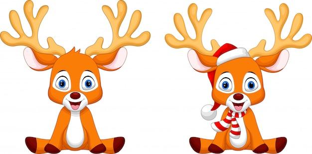 クリスマスの赤い帽子と座っているかわいい赤ちゃん鹿