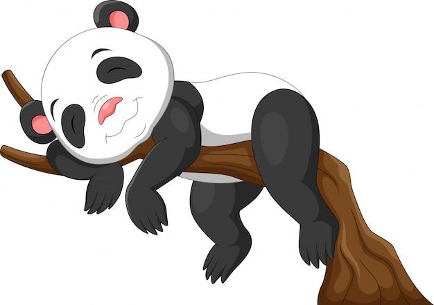 枝で寝ているかわいい赤ちゃんパンダ