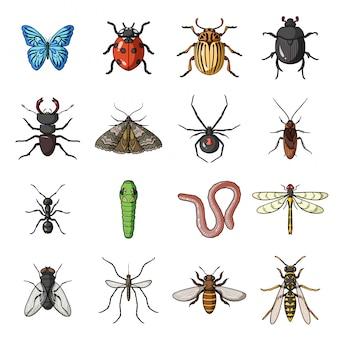 昆虫とバグの漫画は、アイコンを設定します。イラストカブトムシ。分離された漫画セットアイコン昆虫とバグ。