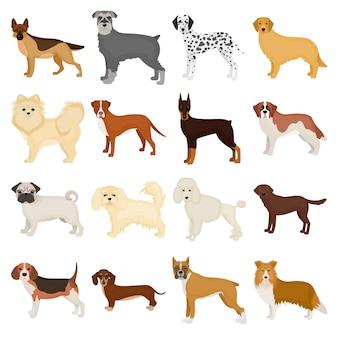 Мультфильм собака морда установить значок. изолированный мультфильм набор значок животных. собачья морда.