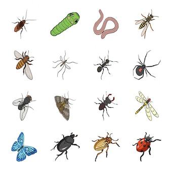 Мультфильм насекомых установить значок. жук изолированные мультфильм установить значок. насекомое