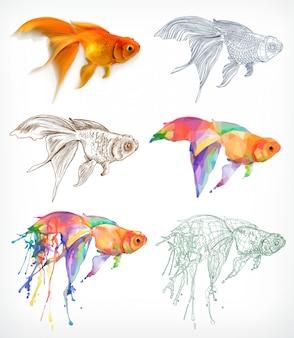 金魚、さまざまなスタイル、ベクトル描画
