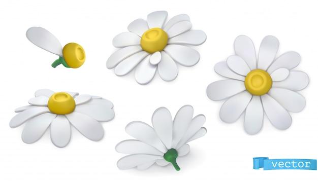 Цветы ромашки в мультяшном стиле