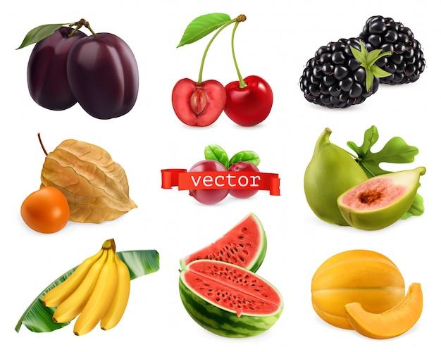 新鮮なフルーツとベリー。現実的なベクトルセット