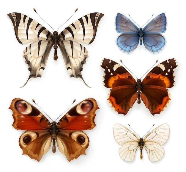 Бабочки, набор иконок