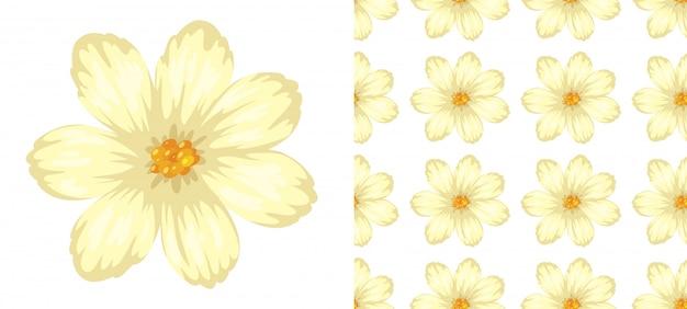 白の花のシームレスパターン