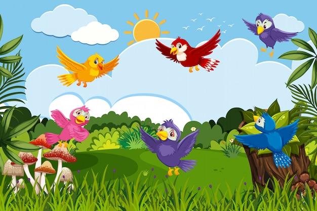 ジャングルのシーンでカラフルな鳥