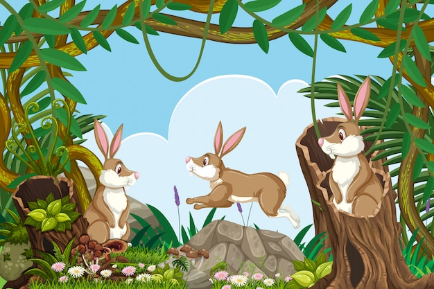 ジャングルのシーンのウサギ
