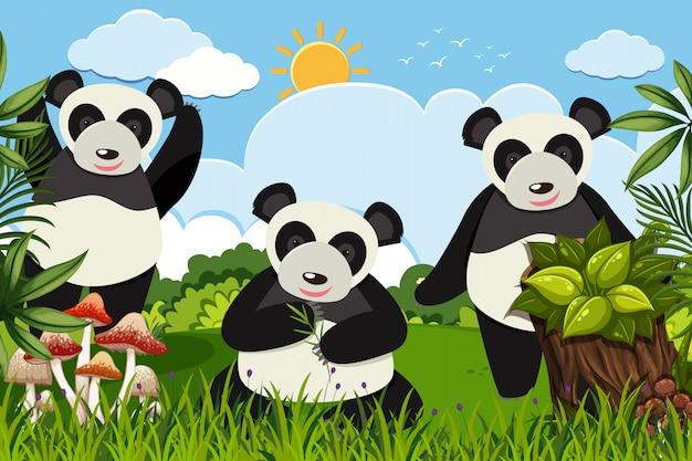 自然のシーンでかわいいパンダ