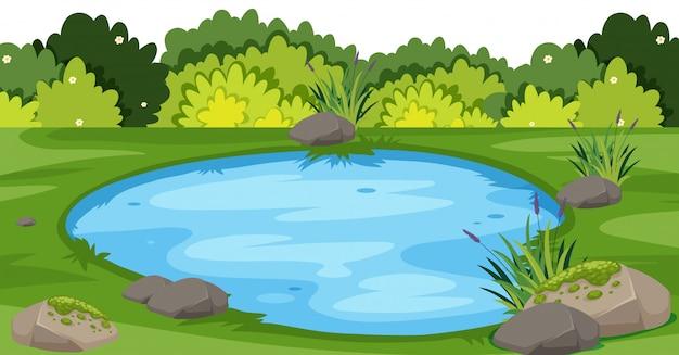 公園の小さな池のある風景