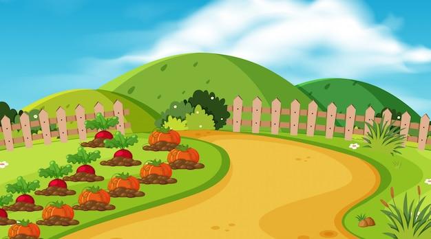 野菜のある庭の景観設計