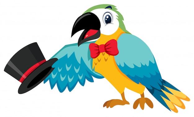 Единый персонаж циркового попугая на белом