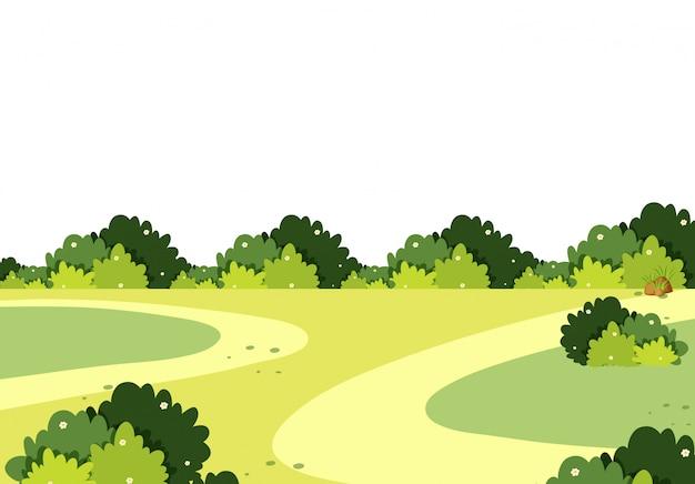 Декорации зеленого поля с кустами