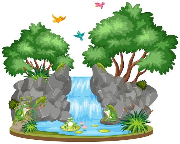 Фоновая сцена водопада и птиц