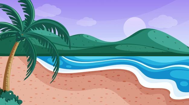 海のビーチと自然シーン
