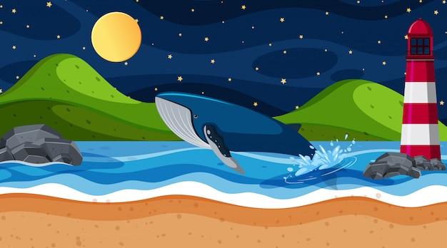 Сцена кита в океане
