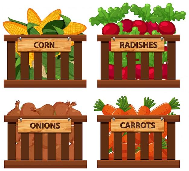 Корзина полна разных овощей