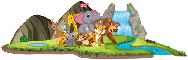 昼間の滝のそばに多くの野生動物がいるシーン
