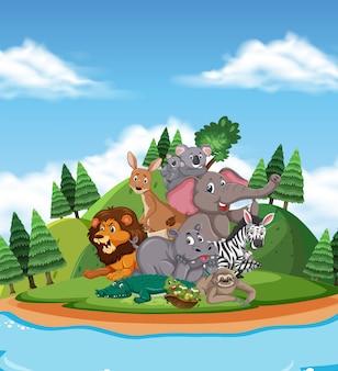 Сцена с множеством диких животных в парке