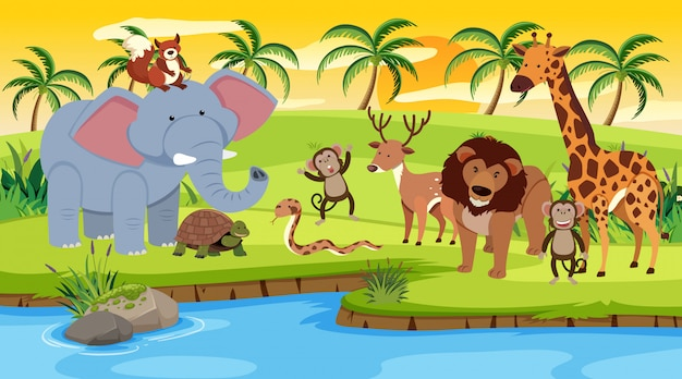 Сцена с дикими животными, стоящими у реки на закате