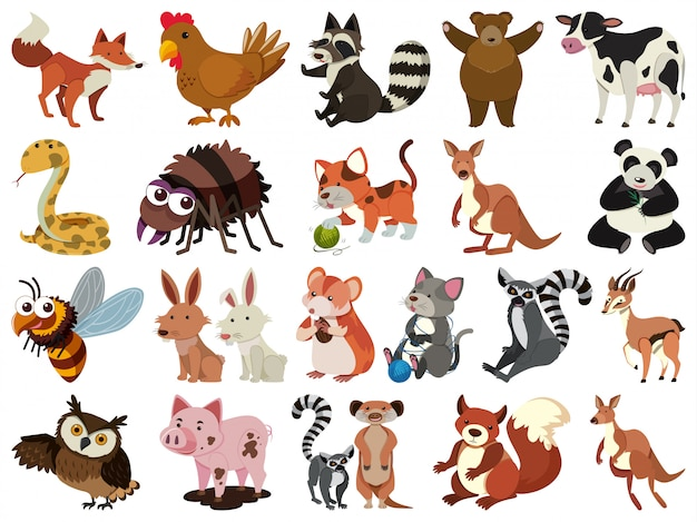 Набор изолированных объектов тема животных