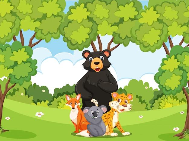 森にたくさんの野生動物がいるシーン