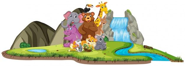 Сцена со многими животными у водопада в дневное время