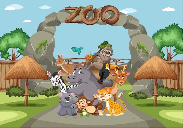 昼間の動物園の野生動物とのシーン