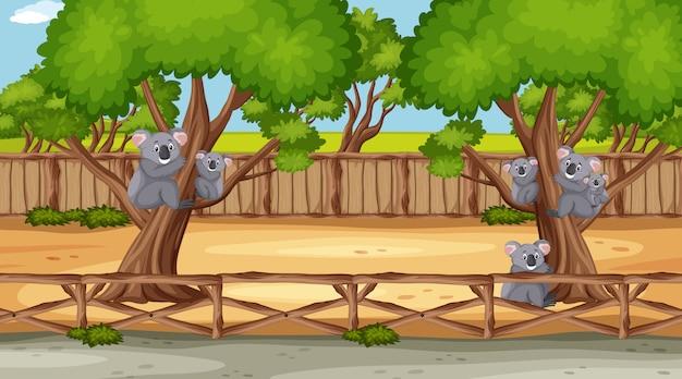 Сцена с дикими животными в зоопарке в дневное время