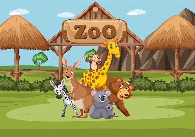 昼間の動物園での野生動物とのシーン